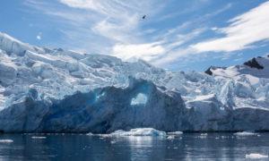 https://www.express.co.uk/news/science/1212045/antarctica-nasa-satellite-weddell-polynya-melting-ice-south-pole-climate-change-spt