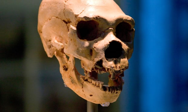 New DNA Study Detects Extinct Human Ancestry for Africans